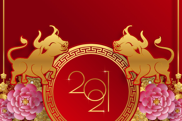 Vinamattress congratulations year of the Ox 2021!