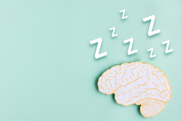 SCIENTIFIC DECODING: SLEEP OR BRAIN, WHICH CAME FIRST?