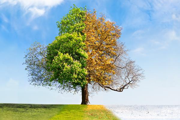 CHUYỂN MÙA ẢNH HƯỞNG THẾ NÀO ĐẾN GIẤC NGỦ CỦA BẠN