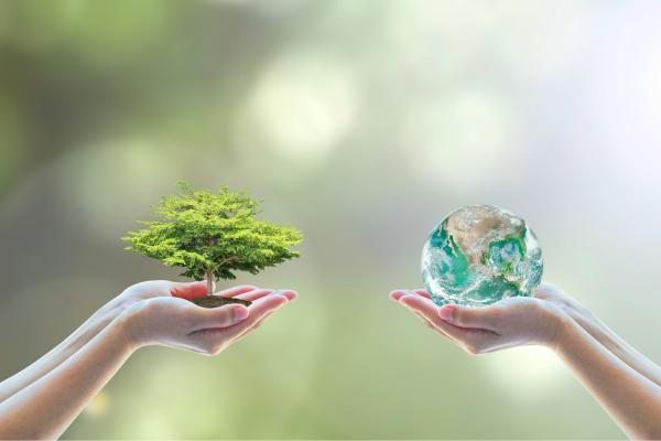 绿色生活睡好觉 - 现代生活的新趋势